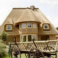 5 правил уютного и экологичного дома